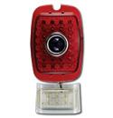 (1941-53)  LED Taillamp & License Lens-Plastic Red-Blue Dot