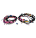 (1950-52)  Wiring Harness-Alternator